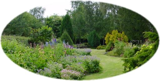 フィンドホーンの庭