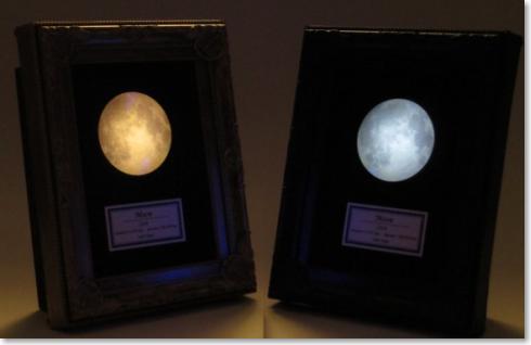 月の標本ランプ
